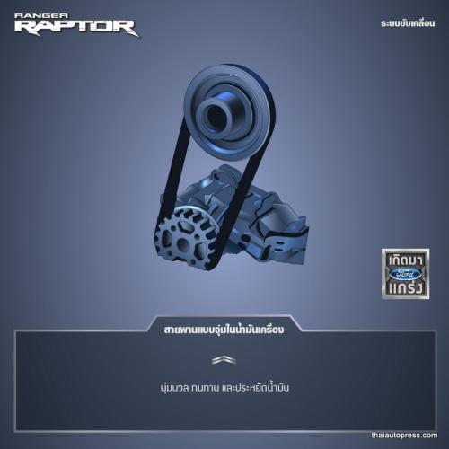 Raptor Ranger infographic Thai-03 - Copy